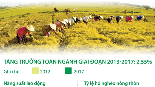 Ngành nông nghiệp tăng trưởng 2,55% trong giai đoạn 2013-2017